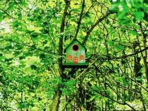une cabane pour oiseau dans le parc du Château de La Bruyère